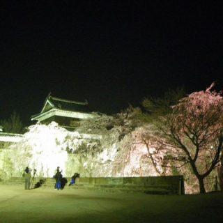 上田城跡公園ライトアップ